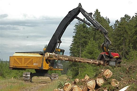 Timber Harvesting - Services