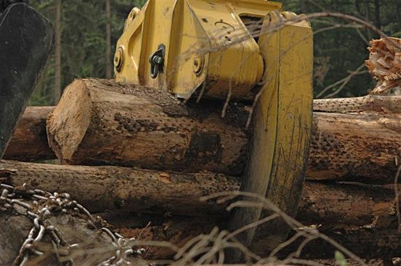Timber Extraction Machinery